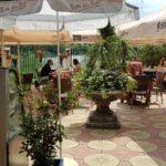 Gradina restaurantului grecesc Amvrosia din Pipera 05
