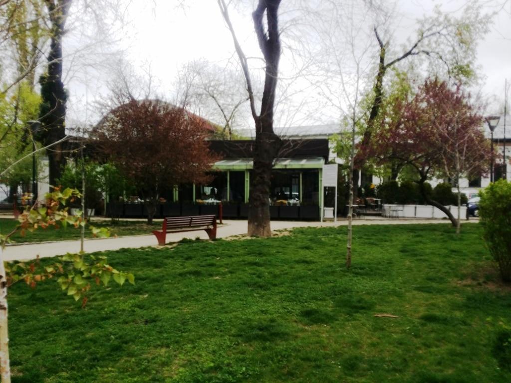 Gargantua in The Park