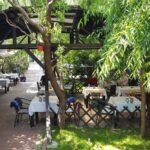 Restaurant traditional romanesc si balcanic in Bucuresti