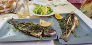 Torna Fratre restaurant traditional romanesc si balcanic in Bucuresti 37