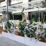 Cafe Citta, cafeneaua bistrou a Hotelului Radisson Blu din Bucuresti