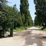 Malul lacului Plumbuita, Bucuresti