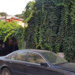 Jacques Pot, terasa boema in Bucurestiul vechi