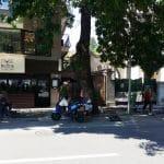 Muse Bistro, restaurant in Piata Victoriei Bucuresti