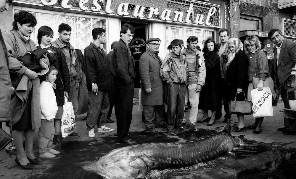 Pescarul anii 90 (foto Vali Pana)