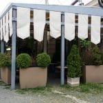 El Pato (Ratoiul), restaurant la Gradina Icoanei in Bucuresti