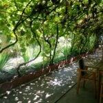 Gastronomika, restaurant cu bucatarie adriatica (italiana si balcanica) pe strada Viitorului 30