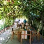 Gastronomika, restaurant cu bucatarie adriatica (italiana si balcanica) pe strada Viitorului 31