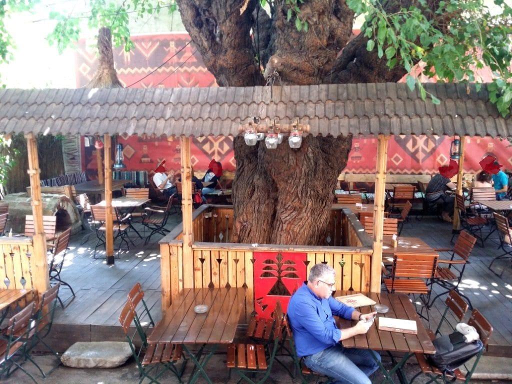 Marele Copac de pe Pitar Mos