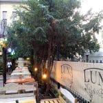 Luna Cafe & Bistro, pe strada Viitorului in Bucuresti