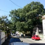 Strada Silvestru din Bucuresti, cu Biserica Silvestru si Restaurantul Il Destino