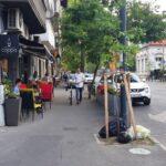 Calea Dorobantilor intre Perla si ASE cu restaurante si cafenele 4