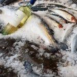 Bistromar, pescaria bistrou de la Piata Floreasca, street food augmentat