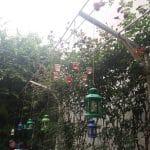 Green Tea, ceainarie boema in zona Pietei Traian din Bucuresti
