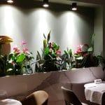 Savart, restaurant cu bucatarie frantuzeasca fina la Biserica Alba