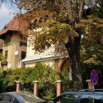 Strada Andrei Muresanu si Piata Vladimir Ghyka, cu restaurantul Zexe