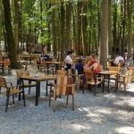 La Muma Padurii, restaurant cu terasa in padure la Edenland Park in Balotesti