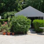 Casa Alba Baneasa restaurant traditional romanesc 12