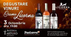 Degustare vinuri Crama Licorna