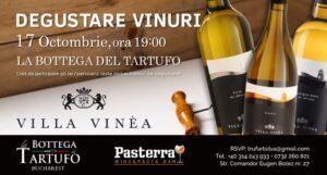Degustare vinuri Villa Vinea