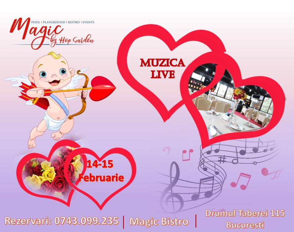 14 februarie Magic Bistro
